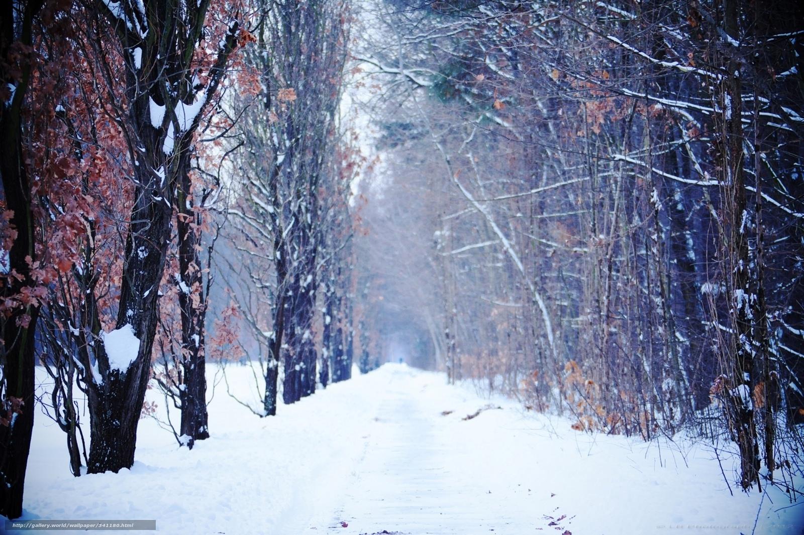 Как сделать чтобы на сайте шел снег лучший бесплатный хостинг для домашней страницы