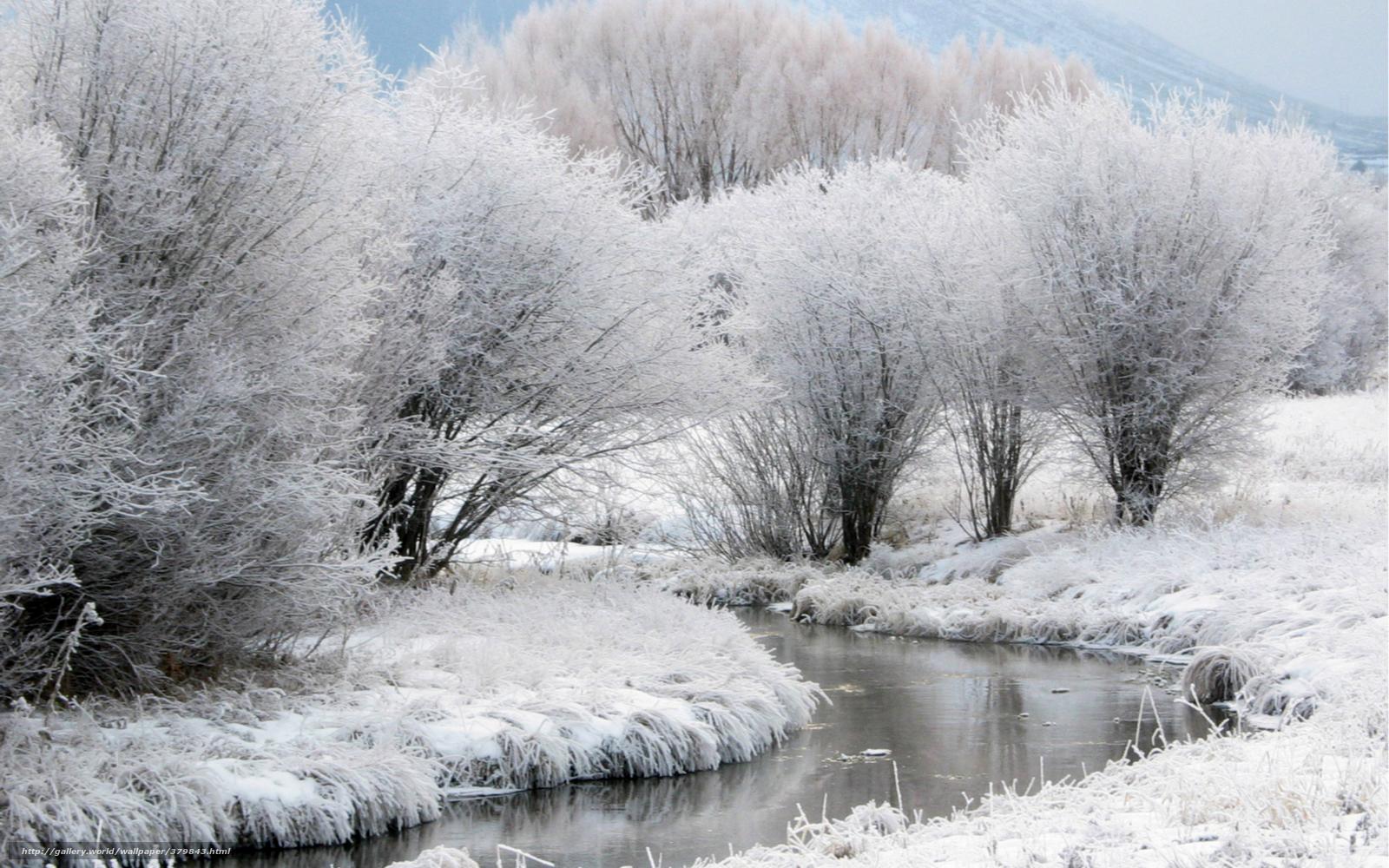 упругие тела может ли быть одновременно туман и снег идти стройке Вылизывая мокрые