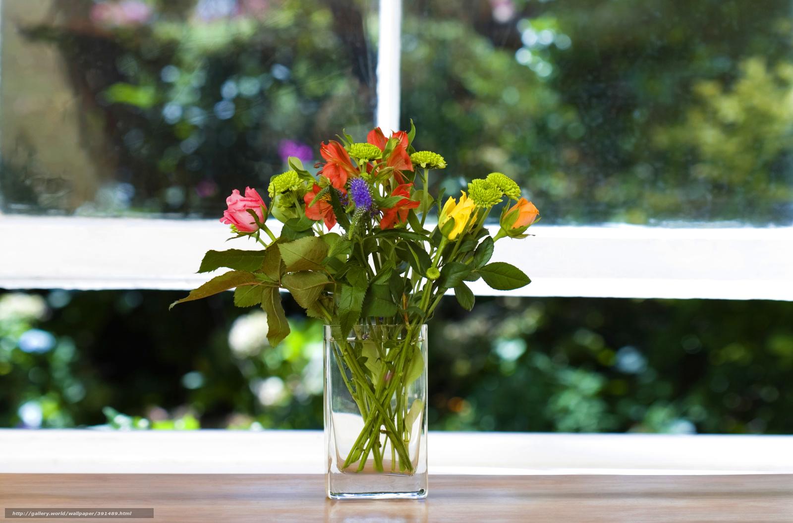 Цветы на окно
