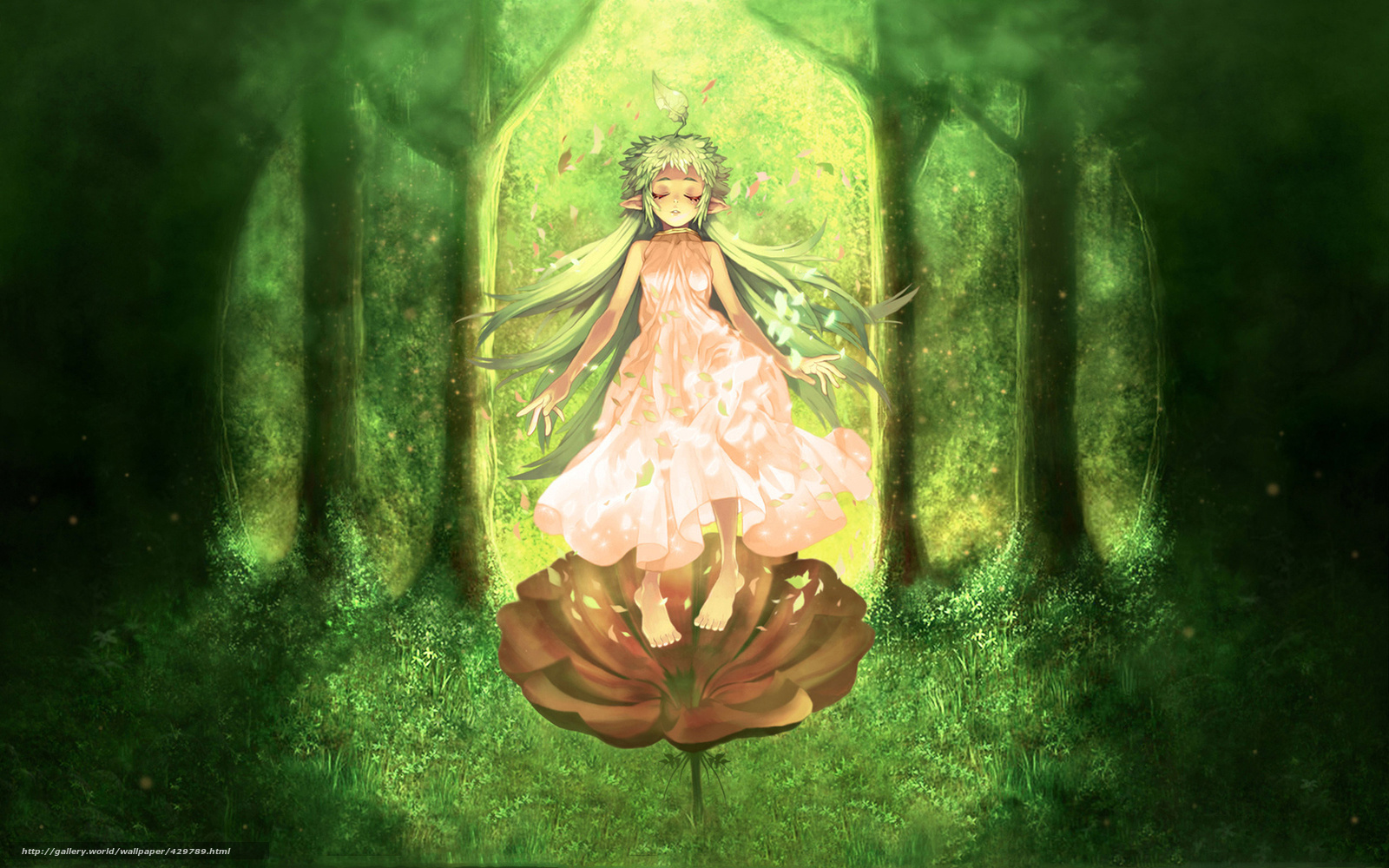 Anime elf girl in forest porno clips