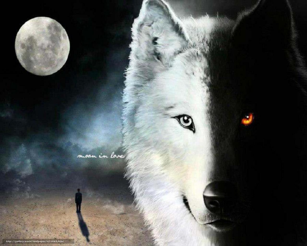 http://st-gdefon.gallery.world/wallpapers_original/472683_gallery.world.jpg?9b30f88865a6ee068aa988b568d8492f