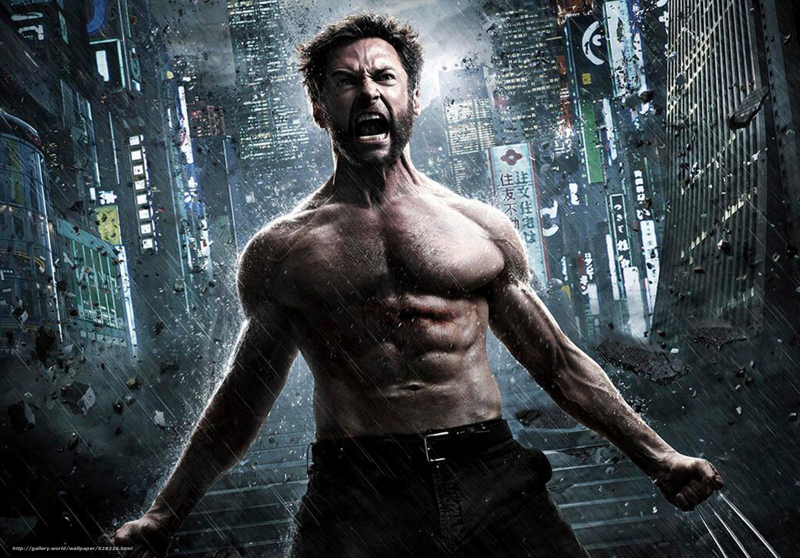 Wolverine: The Immortal, the wolverine, Hugh Jackman, Hugh Jackman, Logan, wolverine