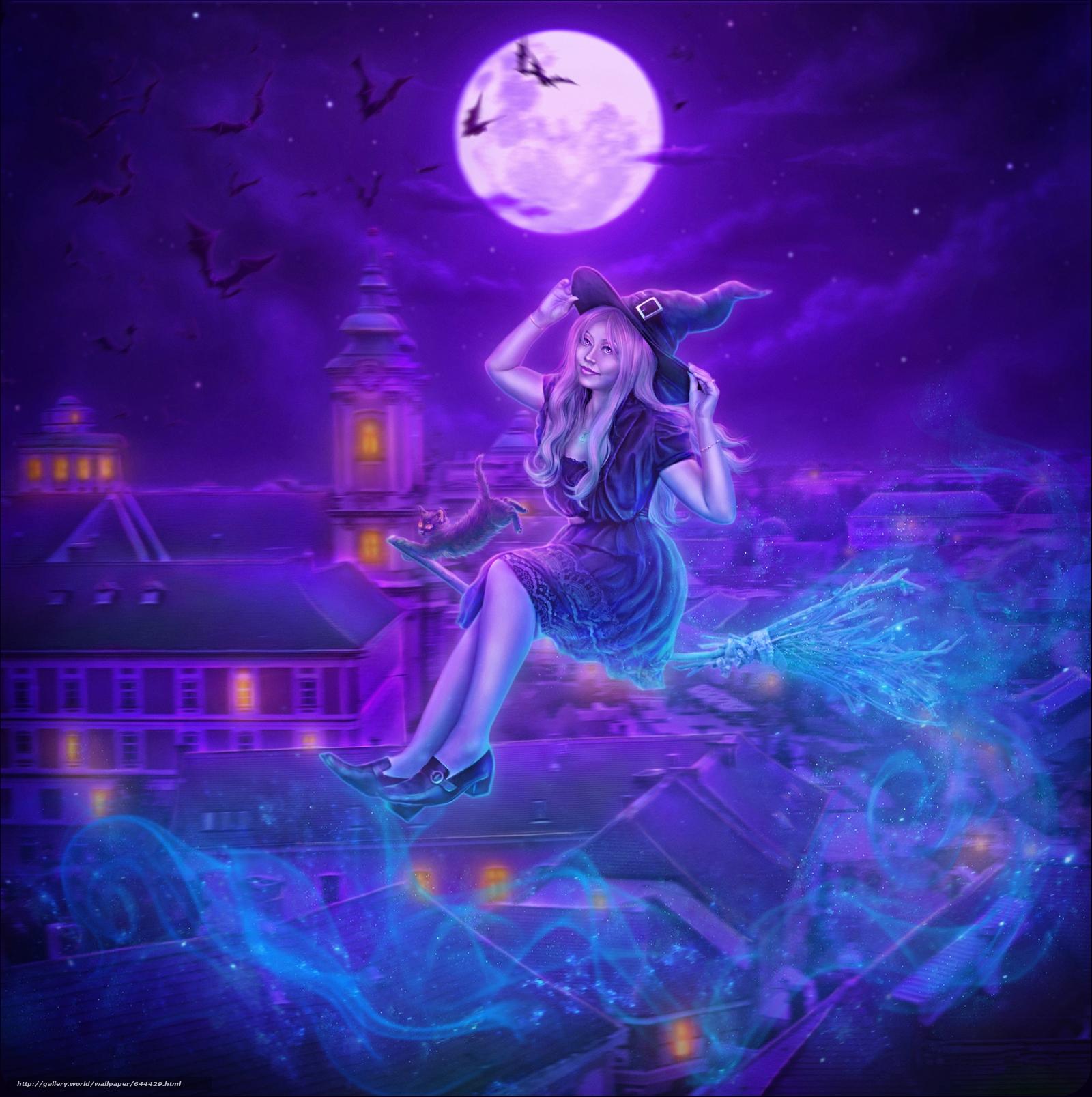 night, moon, vedmachka on a broomstick, kitten, fantasy