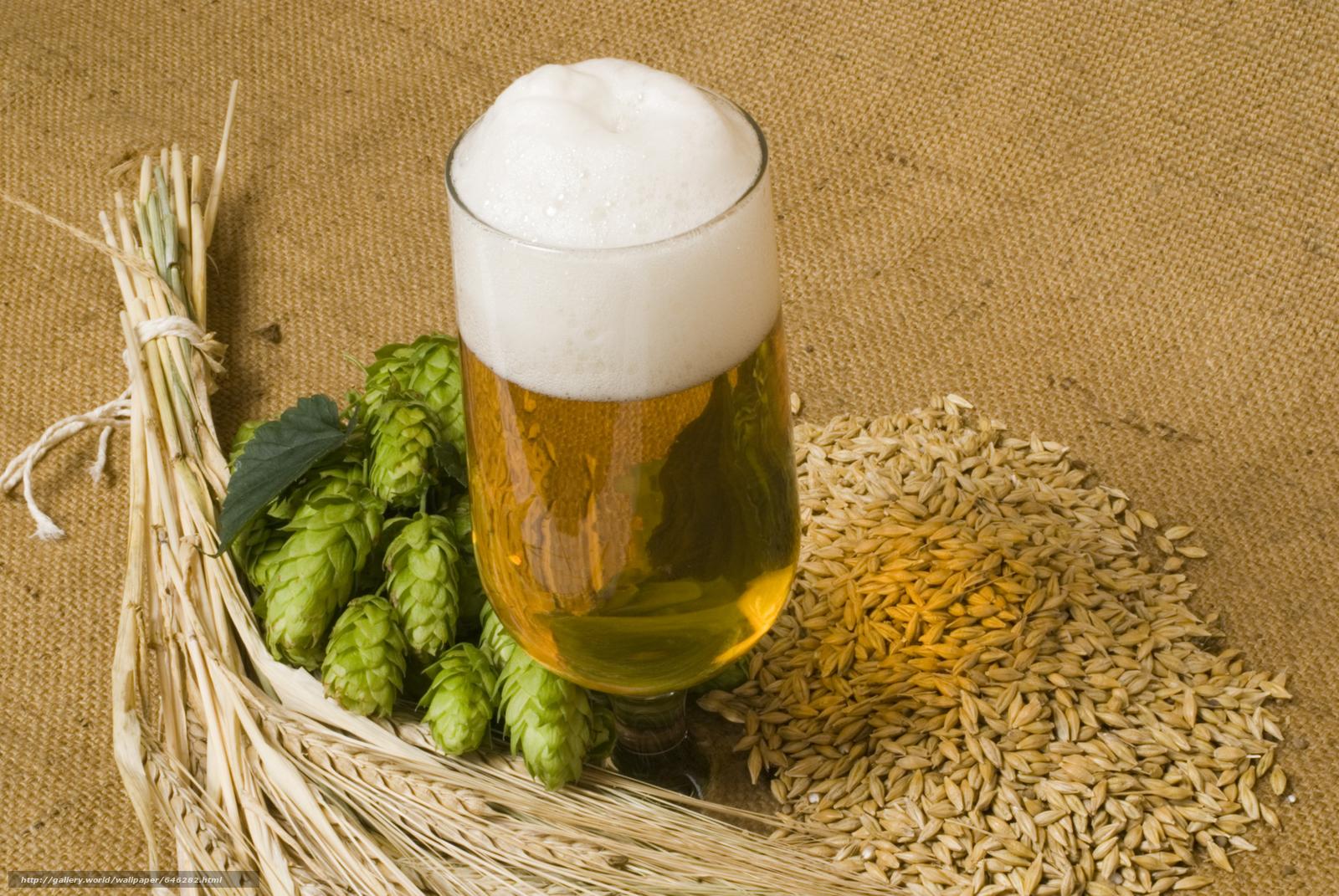 Хмелёфф - пиво в кегах, разливное пиво, живое пиво 78