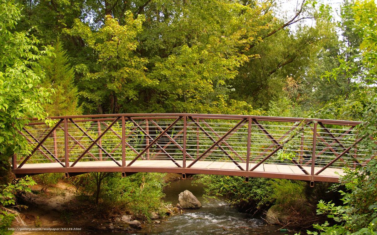 Построить мост через реку своими руками