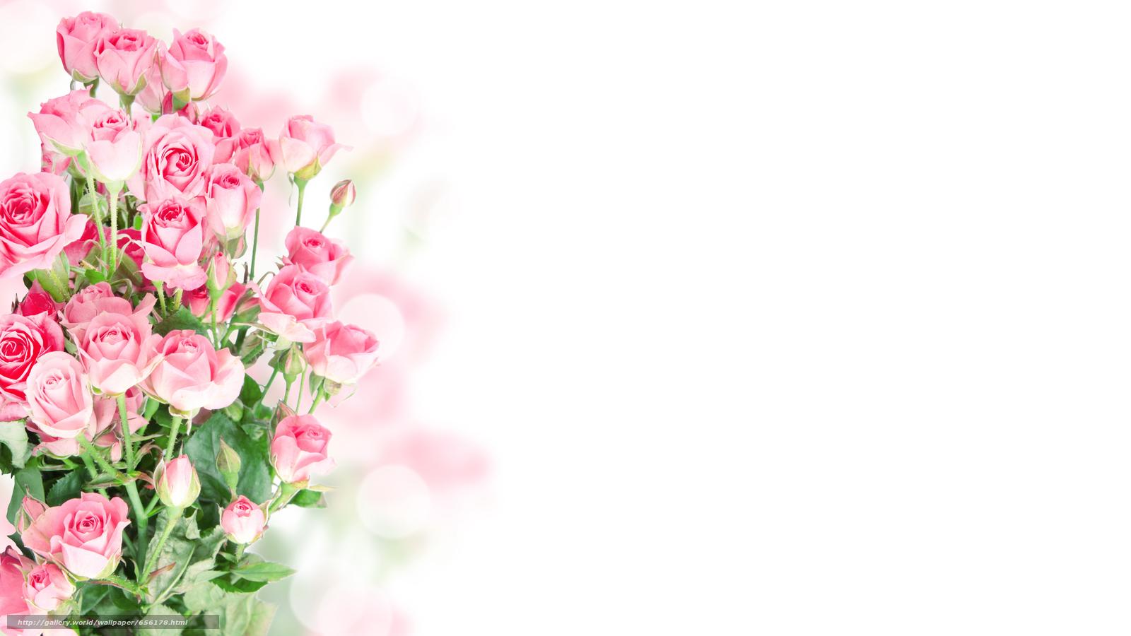 Красивый фон для открытки розовый 36