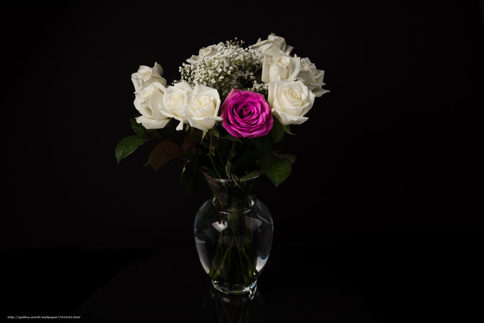 Цветы в вазах черно белое фото