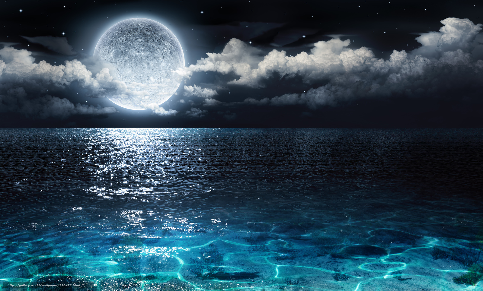 moon, ocean, night