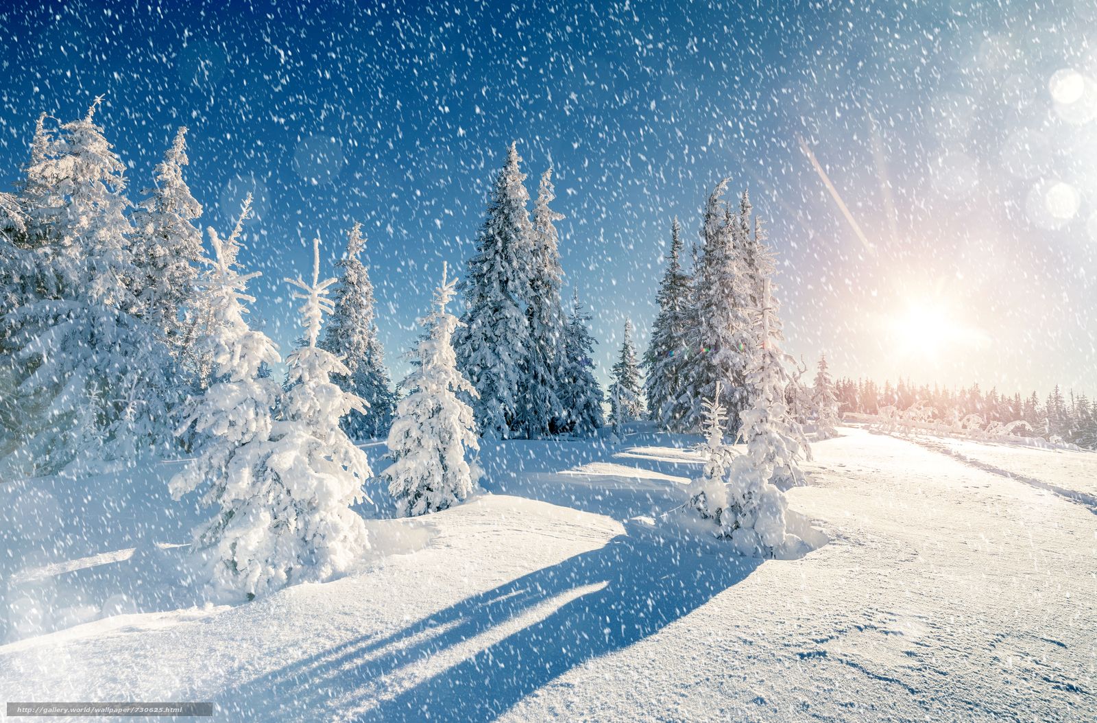 winter, snow, snowdrifts, trees, landscape