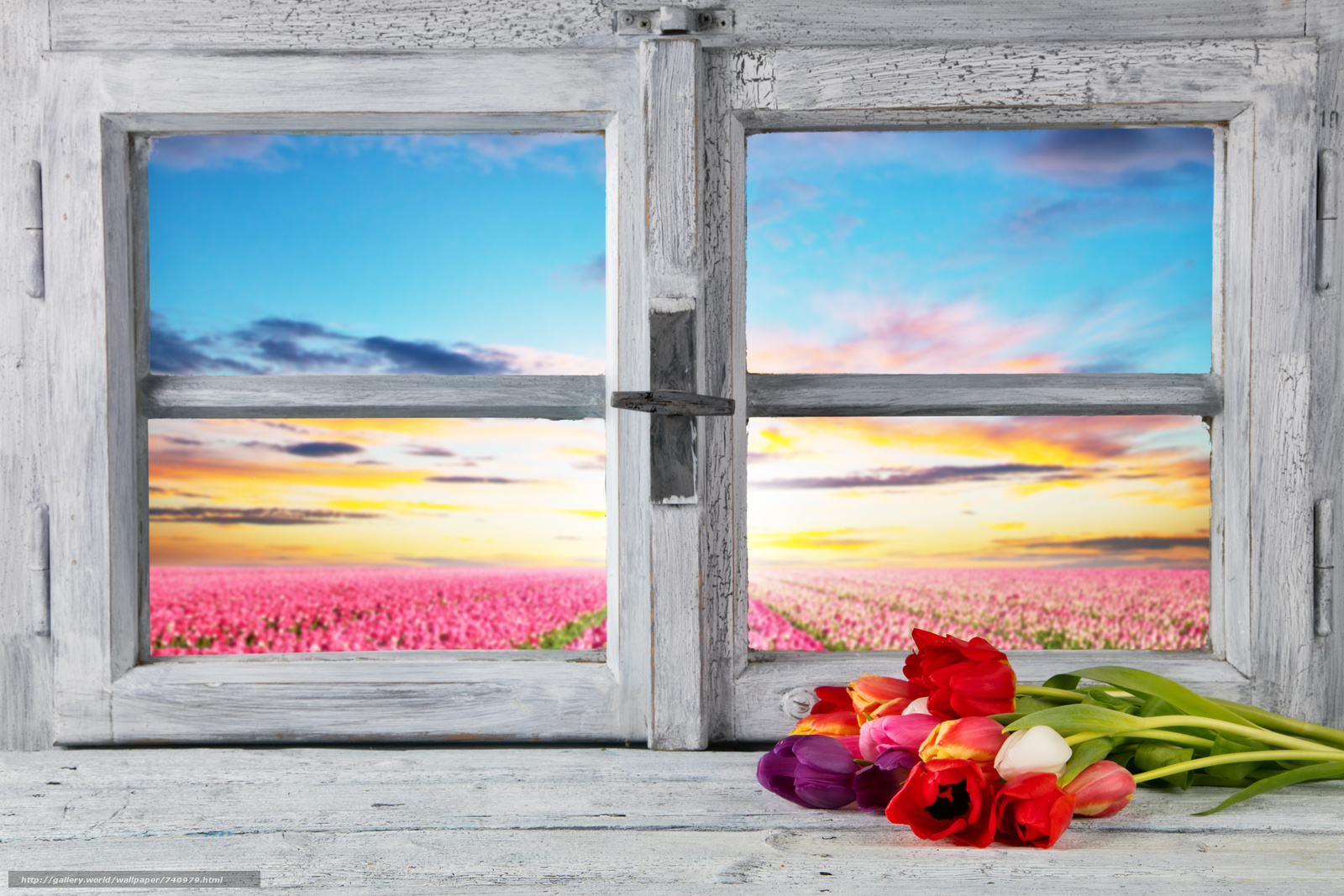 весна, окно, рама, Пасха, тюльпаны