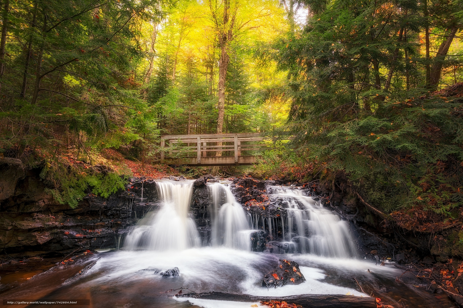 Upper Chapel Falls, Michigan, autumn, River, forest, bridge, waterfall, trees, landscape