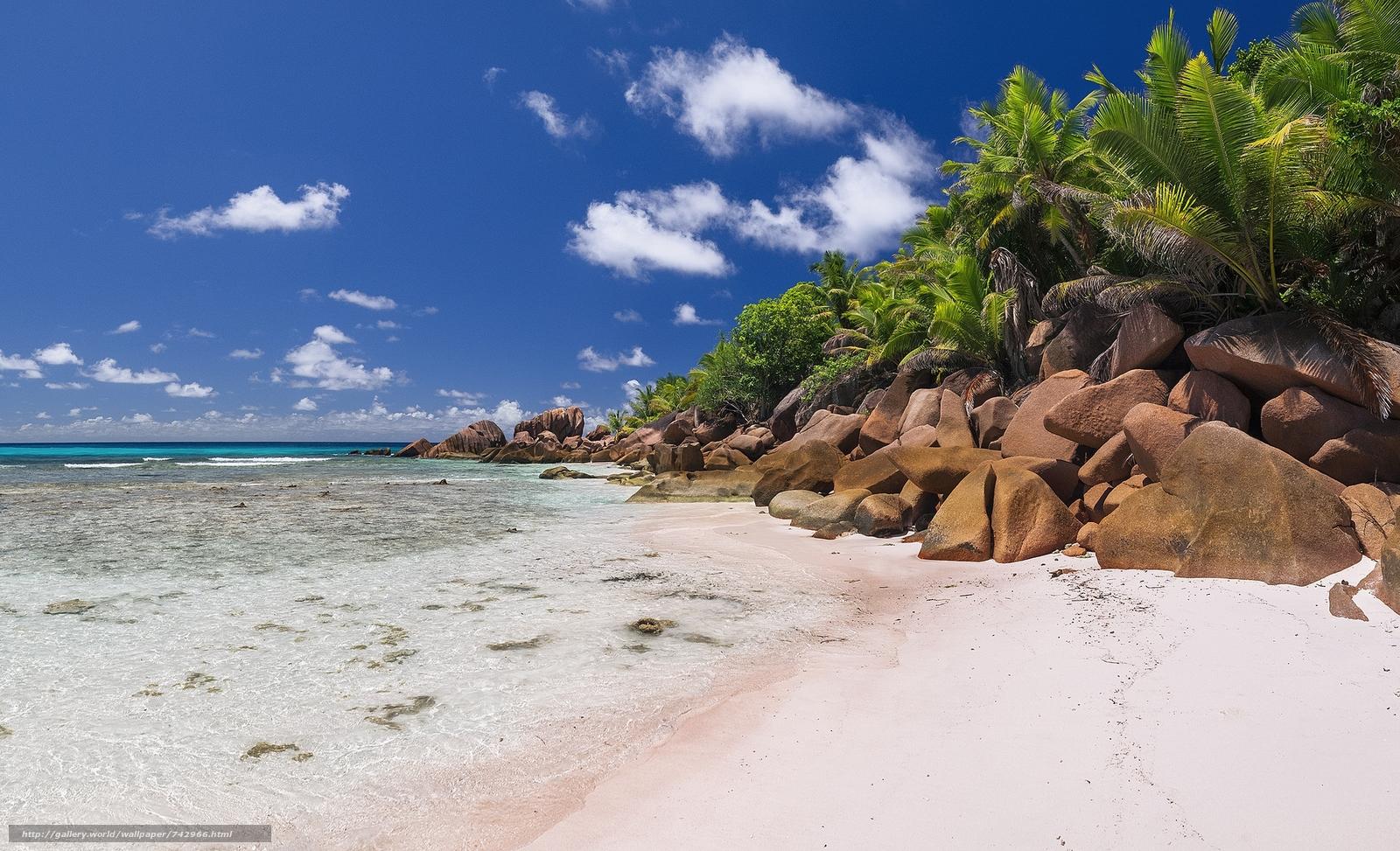 La Digue, Seychelles, sea, Island, Coast, palm trees, beach, landscape