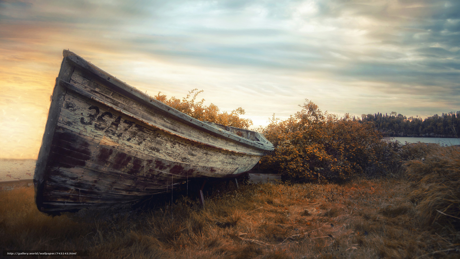 a boat, boats, landscape, nature, water, sunset, peace, relaxation, dawn, Coast, bushes, autumn, clouds, sky