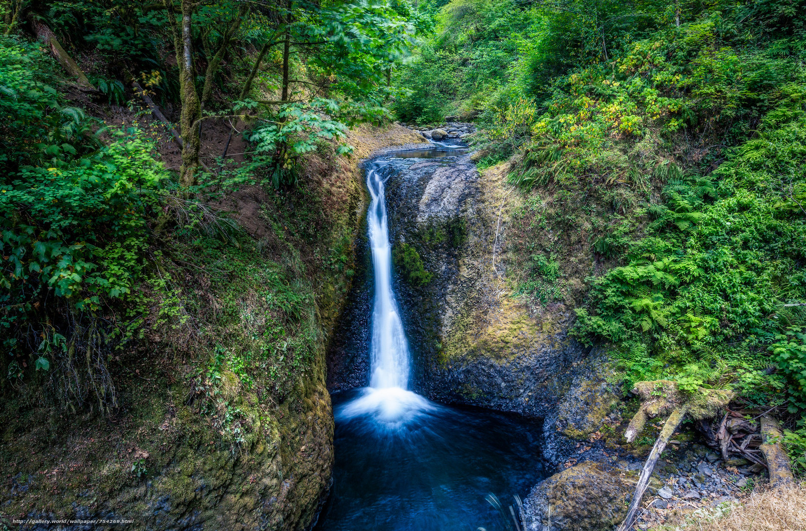 Columbia River Gorge, Upper Oneonta Waterfalls, waterfall, rock, trees, landscape