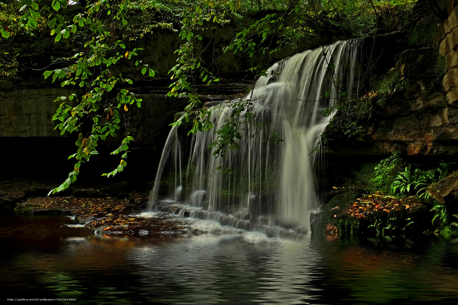 River, forest, trees, nature, waterfall, landscape