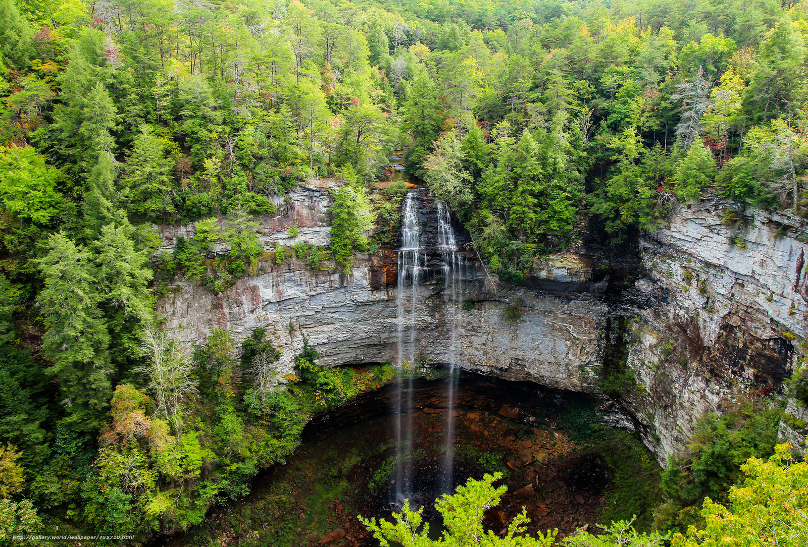 Falls Creek Falls State Park, Falls Creek Falls State Park, waterfall, rock, forest, trees, landscape