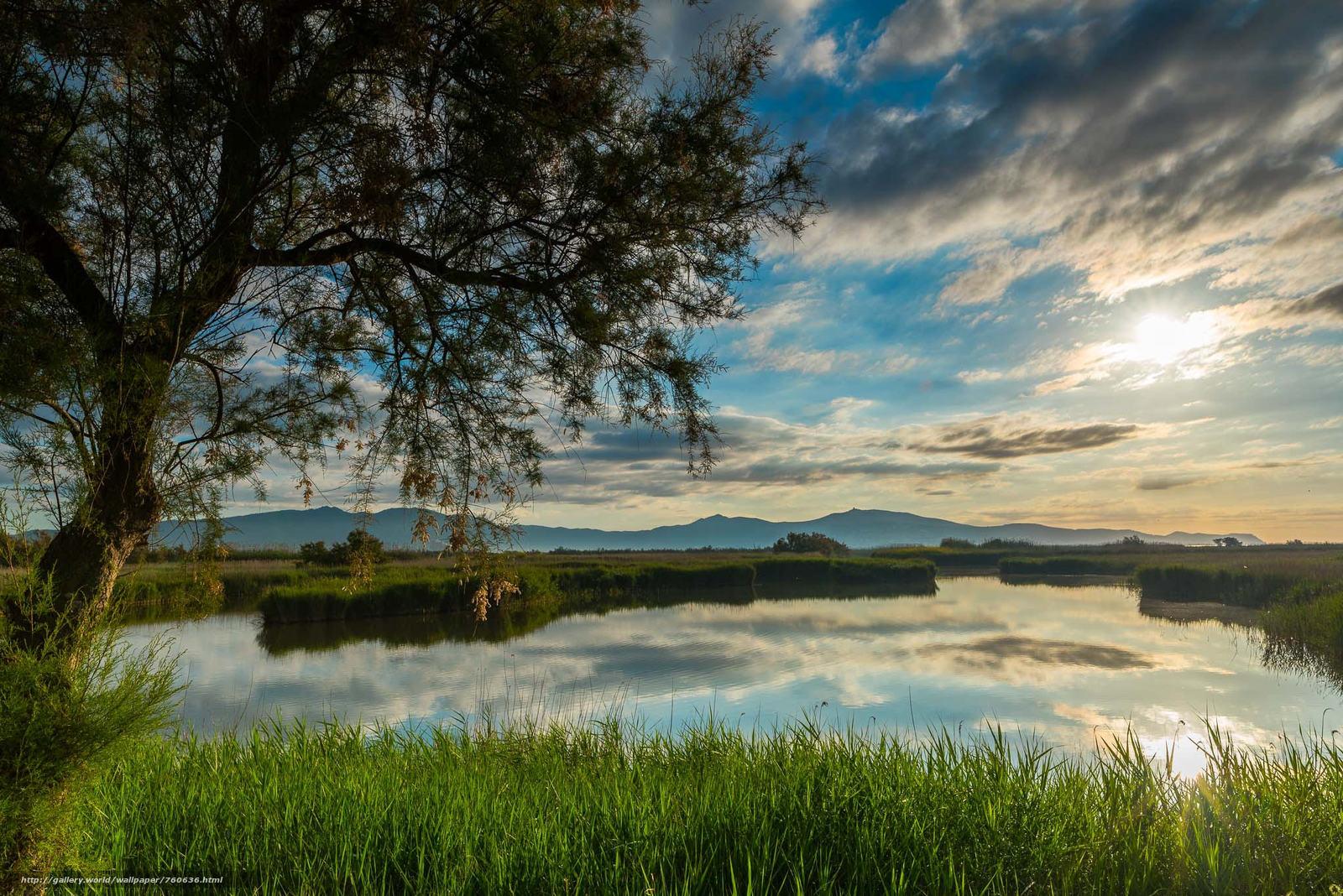 sunset, River, tree, landscape