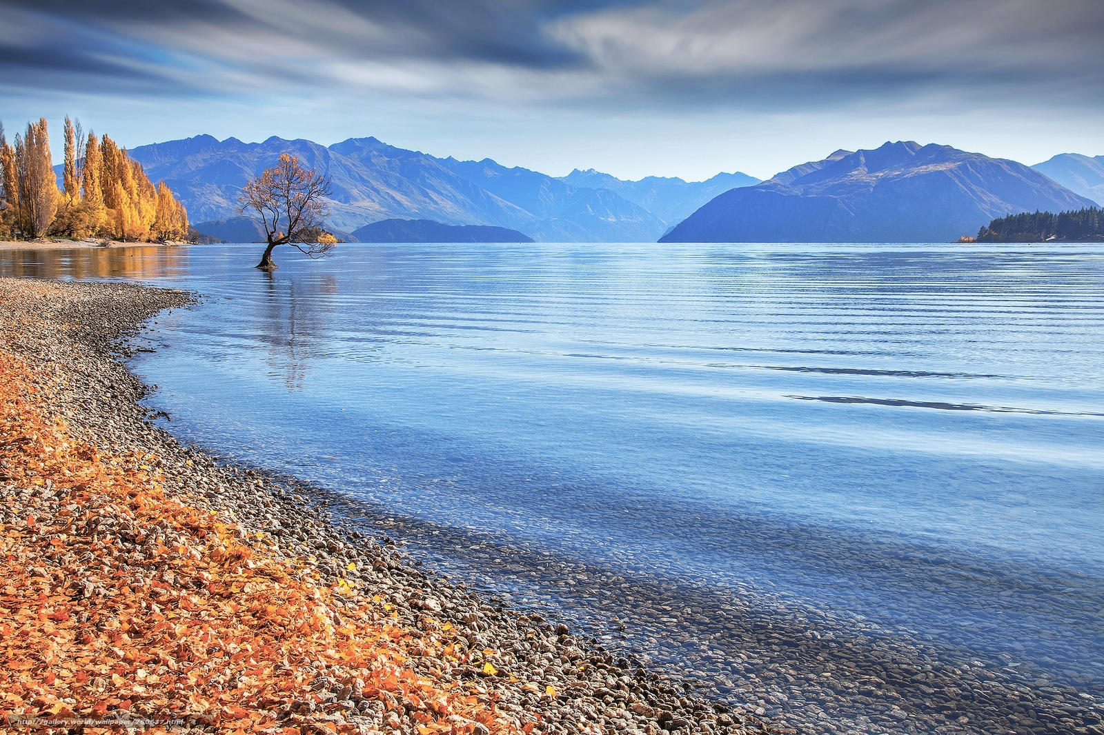New Zealand, Wanaka, tree, lake, the mountains, autumn, landscape