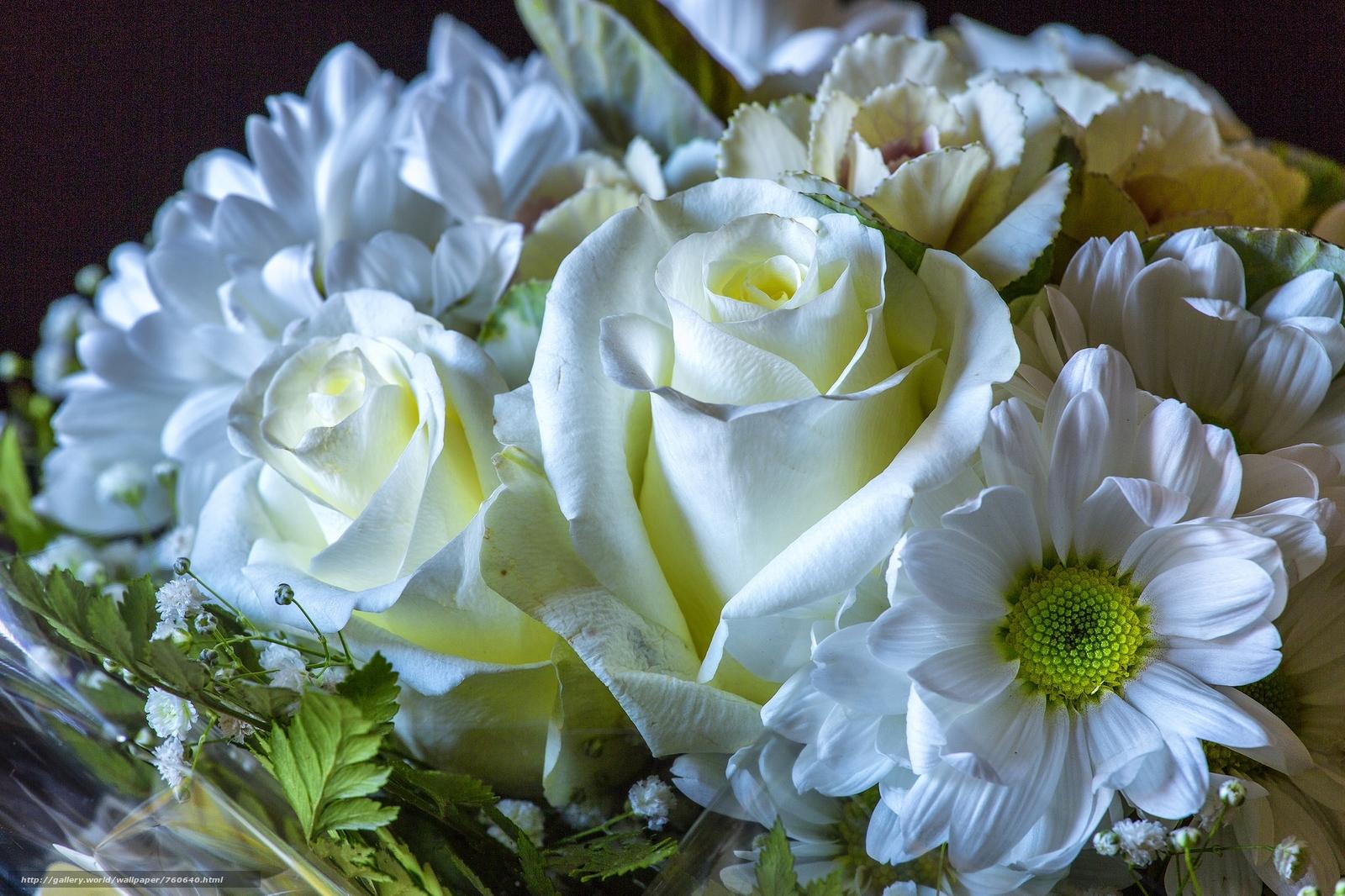 roses, flowers, bouquet, flora