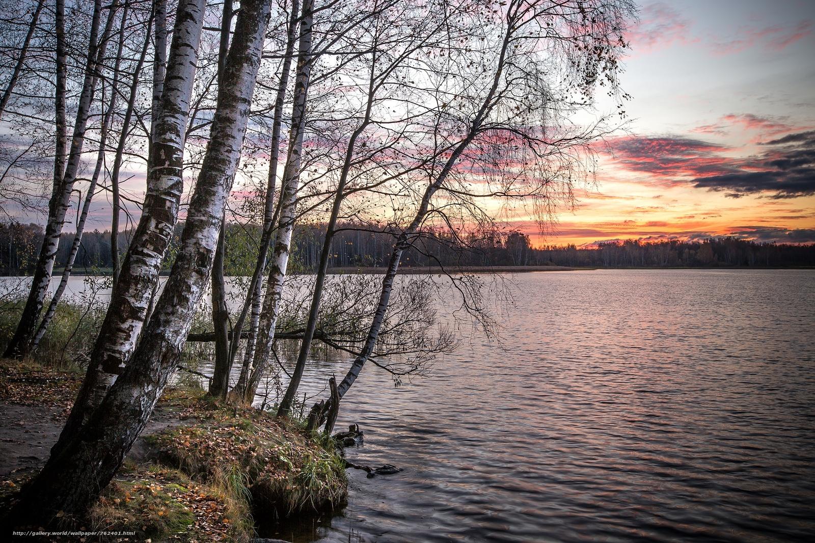 On the shore of Lake Uchinsky, Moscow region, Russia, autumn, sunset, Uchi lake, landscape