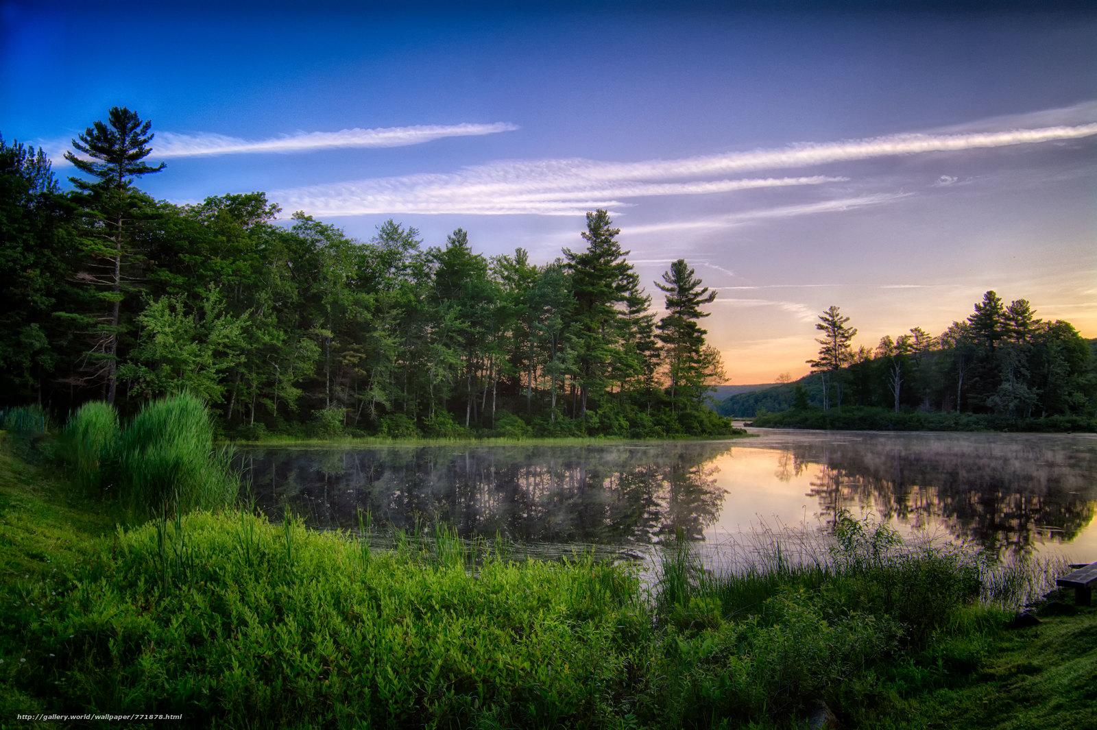 закат, озеро, лес, деревья, пейзаж