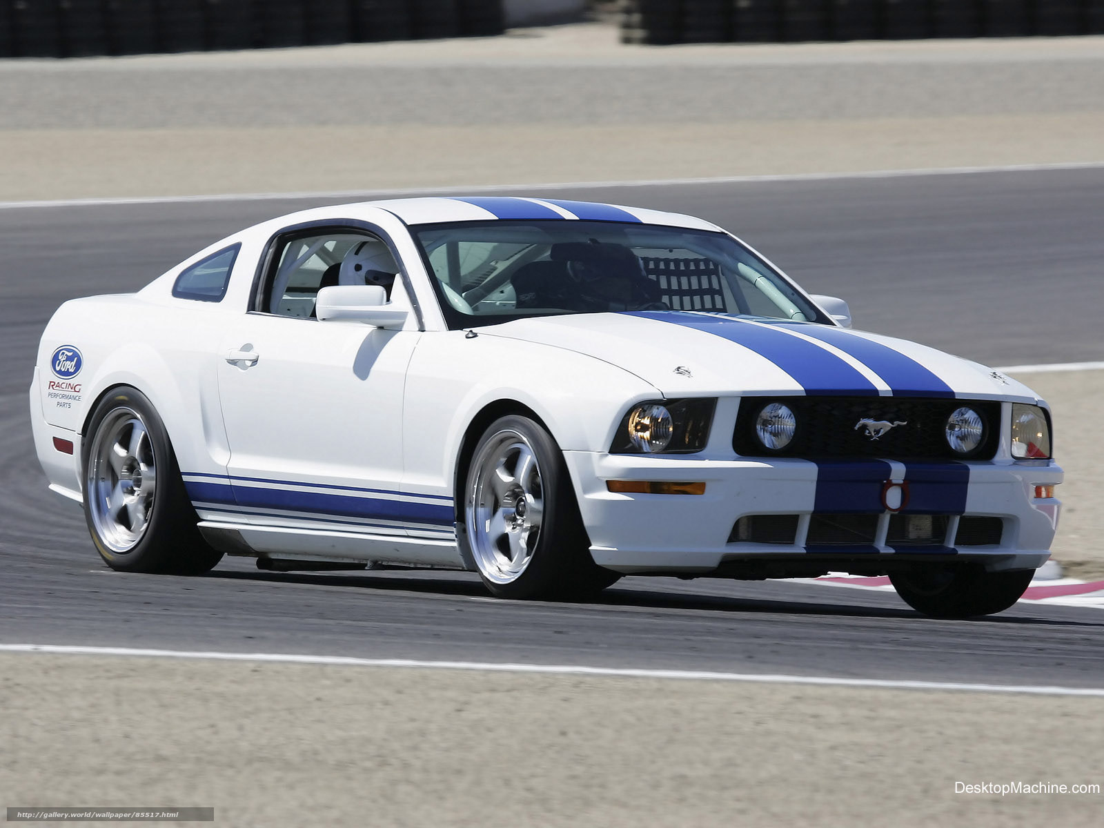 an overview of the car mustang and the properties of special treatment