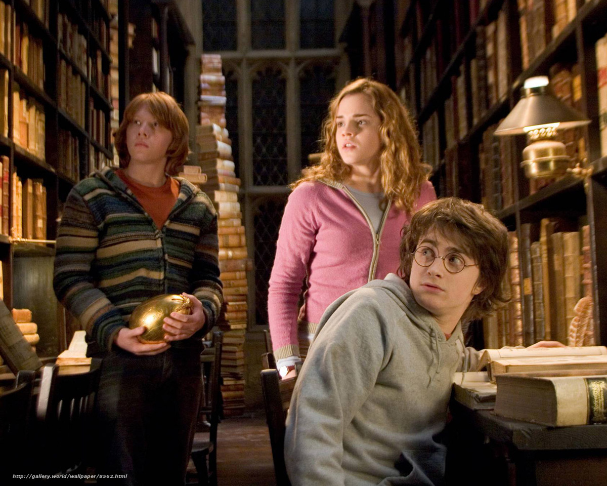 harry potter and its mental illness