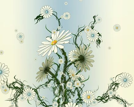 Daisies, Flowers, flat, dry, sluggish
