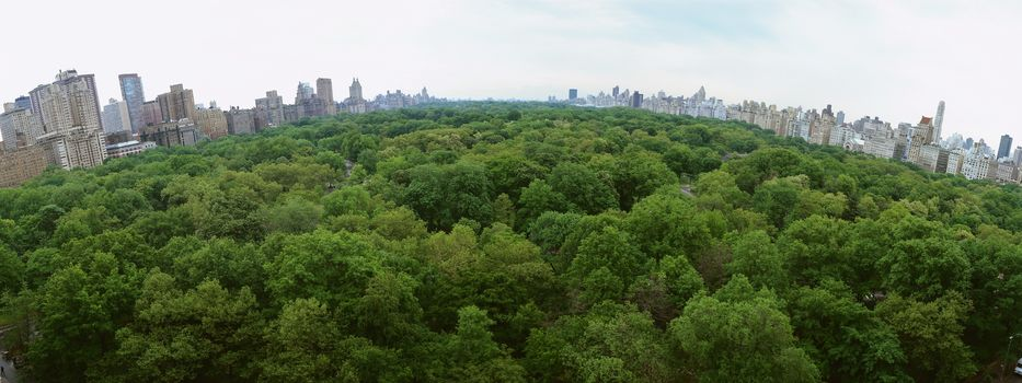 Park, City, Trees