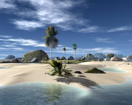 rendering, tropical islands, palm, stones