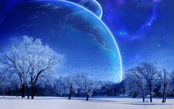 winter, moon, sky, blue, Trees