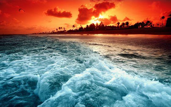 Glow, sunset, coast, wave