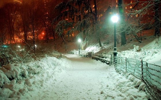 winter, snow, evening