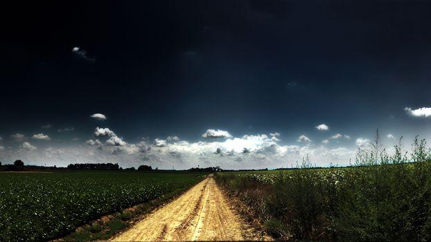 road, field, summer