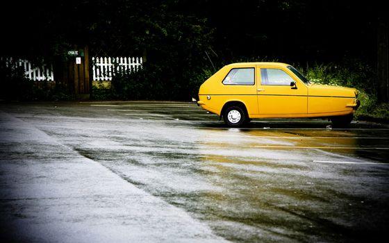 желтая, непогода, асфальт