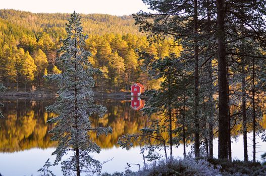 Norway, autumn, forest, Trees, needles, lodge, coast, river, reflection