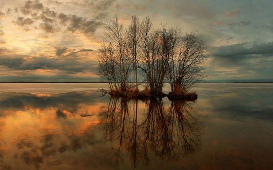 nature, sunset, lake, Trees