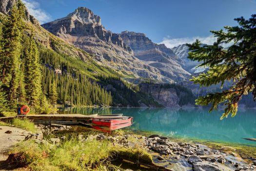 lake ohara, yoho national park, canada, Canada, lake, wharf, Boat, forest, ate, Mountains