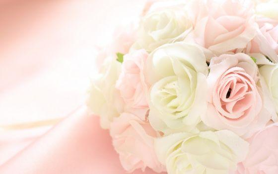 Flowers, tissue, Fringe, Petals