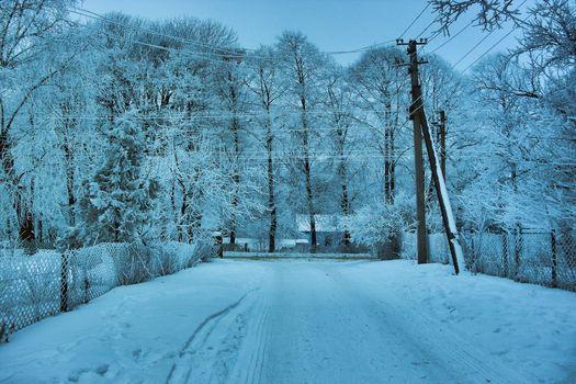 Trees, snow, Winter, Wire, landscape, road