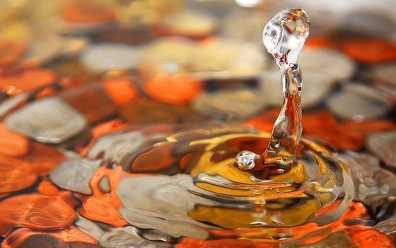 drop, water, makrosemka