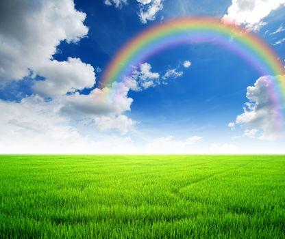 field, sky, rainbow