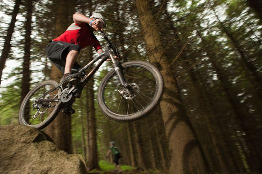 bicycle, bike, forest, mountain, biking, cycling