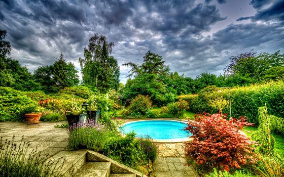 garden, pool, trees, landscape