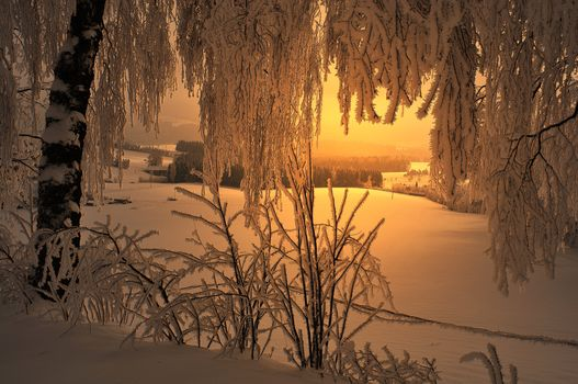 sunset, winter, field, trees, home, BRANCH, landscape