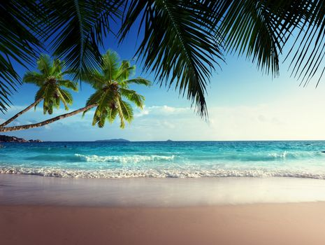 Emerald, sea, Paradise, sunshine, beach, sky, tropical, blue, Coast