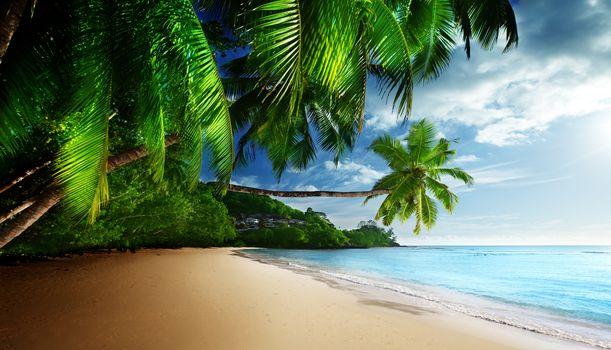 Coast, Paradise, tropical, sea, sky, sunshine, Emerald, blue, beach
