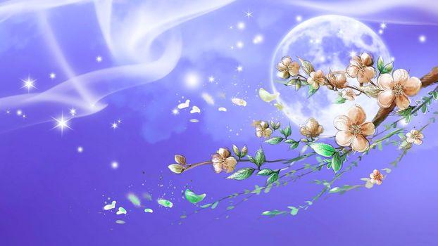 moon, branch, Star, Sakura
