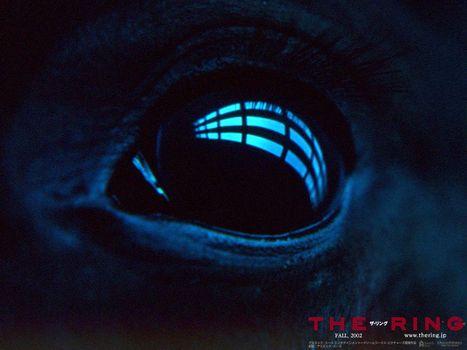 Wake, The Ring, film, movies