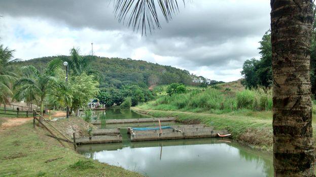 nature, green, trees, Lake, sky, melancolic, landscape